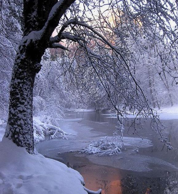 Stopinje v snegu